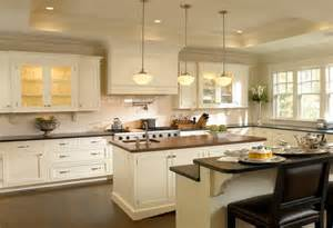 Hardware For Kitchen Cabinets Ideas by Luxurious White Kitchen Cabinet Ideas Pictures Iecob Info