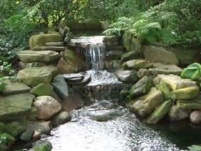 koi pond waterfall flickr photo sharing