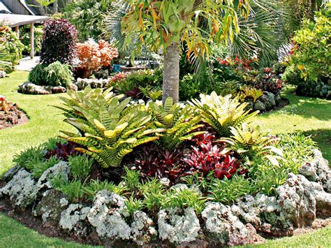 how to create a tropical backyard how to plan a tropical garden new zealand handyman magazine
