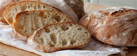 pane casereccio fatto in casa pane rustico agrodolce