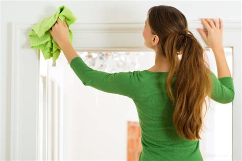 cleaning home house cleaning services pet and home care
