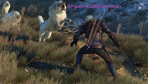mod game wild hunter xp gain multiplier the witcher 3 mods
