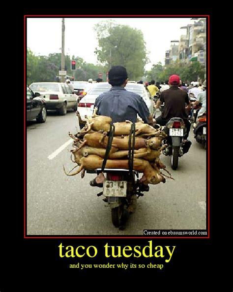 funny quotes  tacos quotesgram