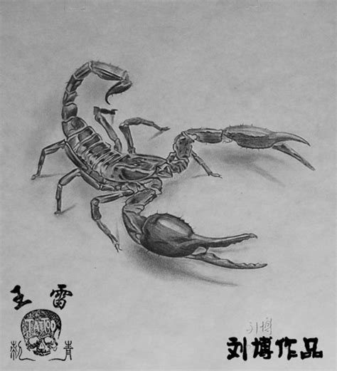 free tattoo designs 3d scorpion tattoo flash
