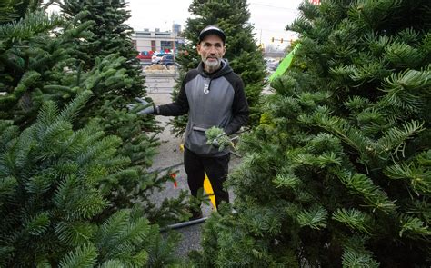 salt lake christmas tree lots trees may be harder to come by in utah this year due to regional shortage shawn miller