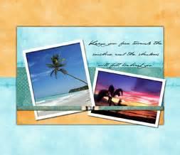 e63 themes tree pretty palm tree wallpaper free scenic ocean theme