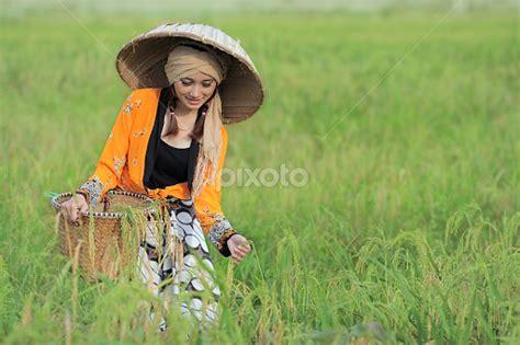 Dress Batik Cantik Qinta Padi jangan pernah memandang sebelah mata pada petani