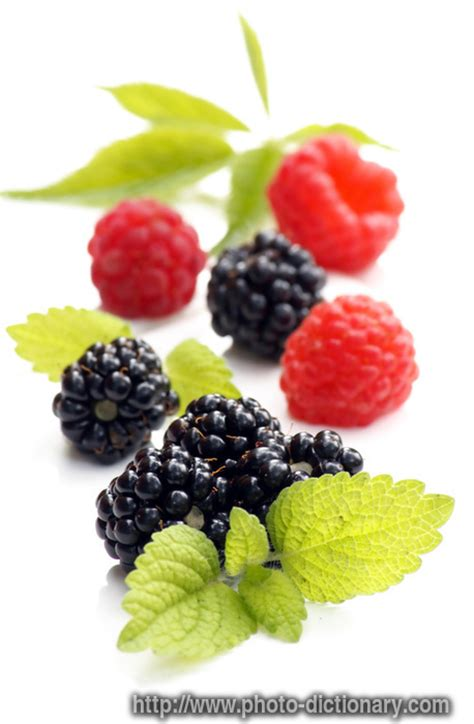 fruit or berry berry fruit photo picture definition at photo dictionary