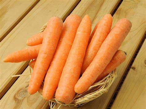 coltivare carote in vaso il piacere giardinaggio giardinaggio mobi