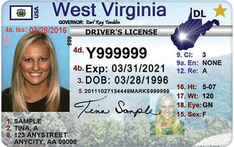 virginia boating license expiration division of motor vehicles