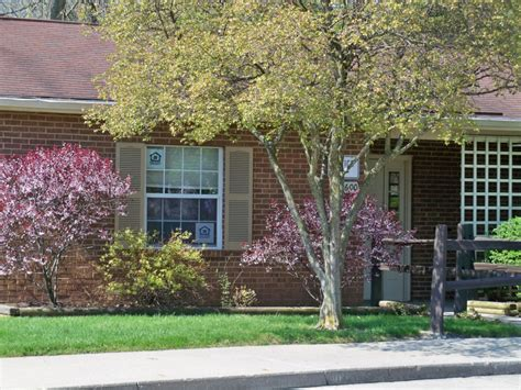section 8 housing springfield ohio crossgates apartments 600 crossgates ct springfield