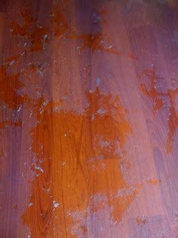 How To Remove Wax and Oil Soap Cleaners from Wood Floors