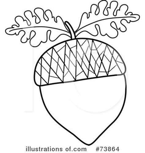 acorn squash coloring page clip art black and white acorn squash cliparts