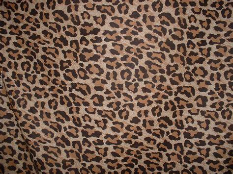 leopard wallpaper pinterest wallpaper to put on facebook leopard print twitter