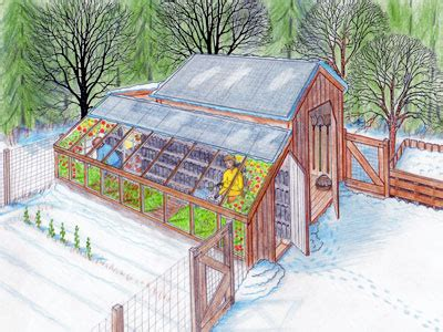 backyard sustainability backyard sustainability greenhouse and chicken coop for year round use fox home design