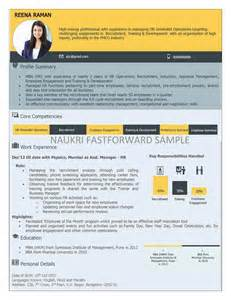 Visual Resume Template by Resume Resume Format Pdf