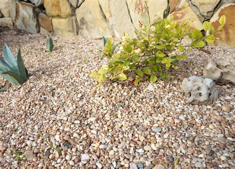 Landscape Fabric For Gravel The Pros And Cons Of Preventing Weeds With Landscape Fabric