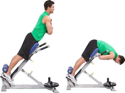 bench exercises for back the 14 best exercises to build a vacuum tight lean