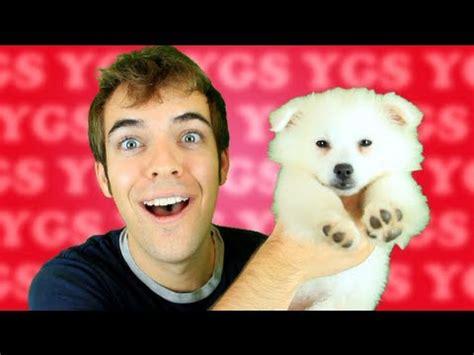 jacksfilms dogs related keywords suggestions for klondike