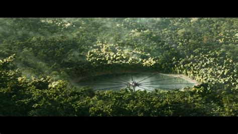 Trees Symbolism by Trailer Tuesday The Hunger Games Catching Fire Love