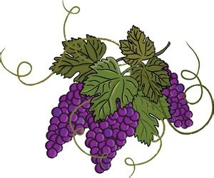Craft Designs For Kids - grape clipart free grapes clip art images grapes stock photos amp clipart grapes pictures clip