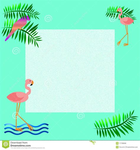 pink flamingo frame royalty free stock photos image