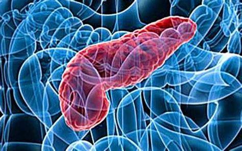alimentazione per pancreatite alimentazione la dieta migliore per la pancreatite