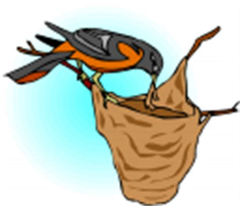 Md Search Terms Oriole Clipart Royalty Free Bird Clip