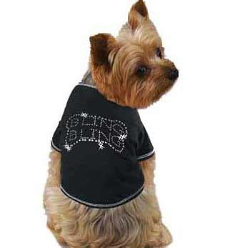 shirts for dogs how to create custom t shirts for dogs