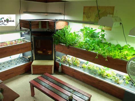 indoor fish tank aquaponics indoor aquaponics