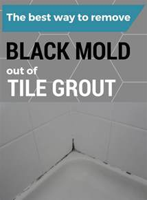 Best Way To Clean Mildew From Shower by The Best Way To Remove Black Mold Out Of Tile Grout