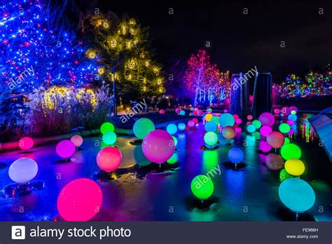 Denver Botanic Gardens Blossoms Of Light Blossoms Of Light One Million Lights Illuminating The Denver Stock Photo Royalty Free Image