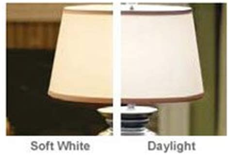 Soft Light Vs Daylight by Soft White Vs Daylight Light Bulbs Before And After
