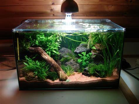 Aquascape Design Layout Cool Aquariums On Pinterest Aquascaping