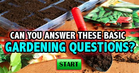 Gardening Quiz Questions Quizfreak Can You Answer These Basic Gardening Questions