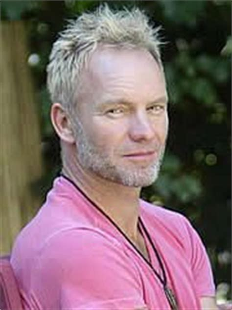 sting hairstyles 1000 images about got a thing for sting on pinterest