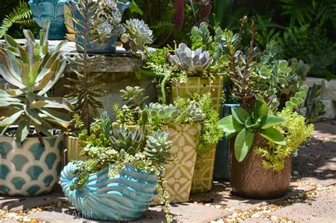 planters for succulents the succulent artist unique succulent and cacti planters think outside the box