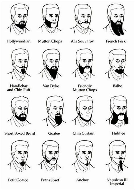 mens hairstyles different types of beards various styles beard names chin curtain lol dandy pinterest