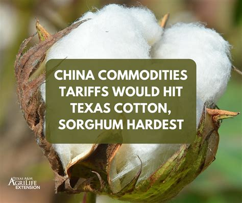 texas commodities china commodities tariffs would hit texas cotton sorghum