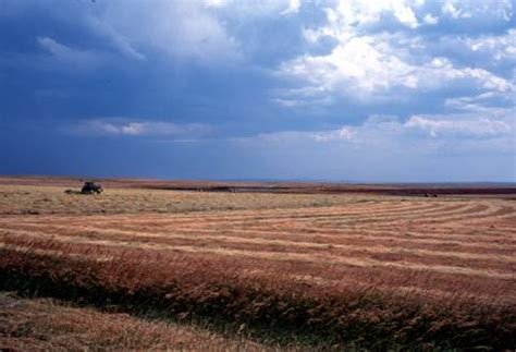 Interior Plains Agriculture Land Cover Trends