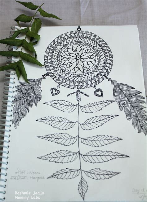coloring pages of neem tree neem leaf drawing