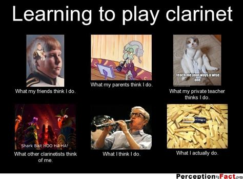 Clarinet Player Meme - learning to play clarinet what people think i do
