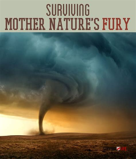 Natures Fury Essay by 17 Best Images About Outdoorcraft On Winter Survival Edible Plants And Shelters