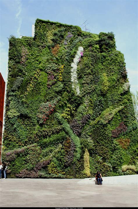 giardino in verticale realizzare giardini verticali progettazione giardini