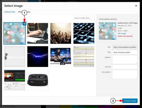 custom layout on wordpress customize wordpress background