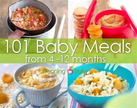 table food ideas for 9 month table food recipes for 9 month brokeasshome com