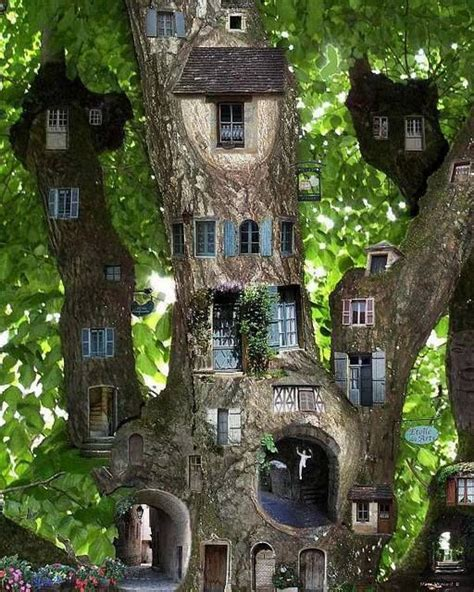 tree quot house quot so cool magical and enchanted forest