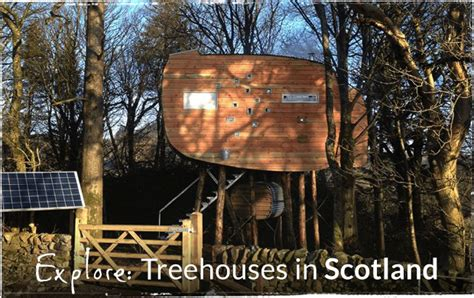 Rent A Treehouse Uk - treehouse holidays in the uk france portugal amp italy canopy amp stars