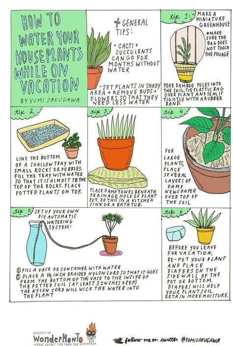 6 diy tips for watering your houseplants while away on vacation 171 the secret yumiverse