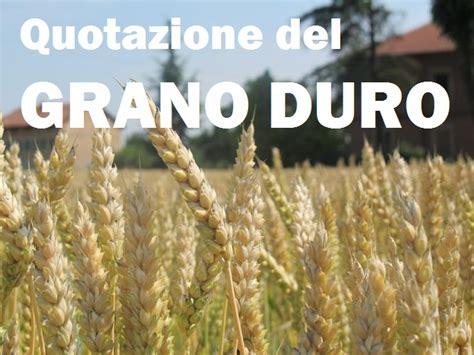 commercio foggia prezzo grano duro i prezzi grano duro la grande truffa a danno degli
